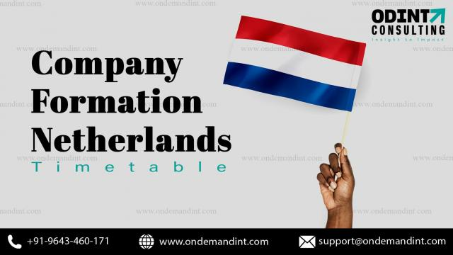 Find out why Holland is a pleasing nation for investors - 1/1